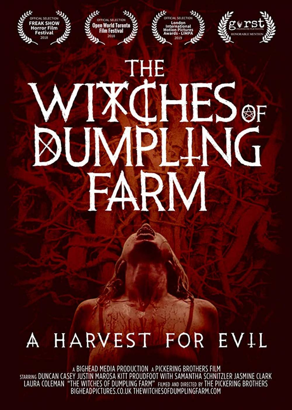 Wicked Witches (AKA: The Witches of Dumpling Farm)